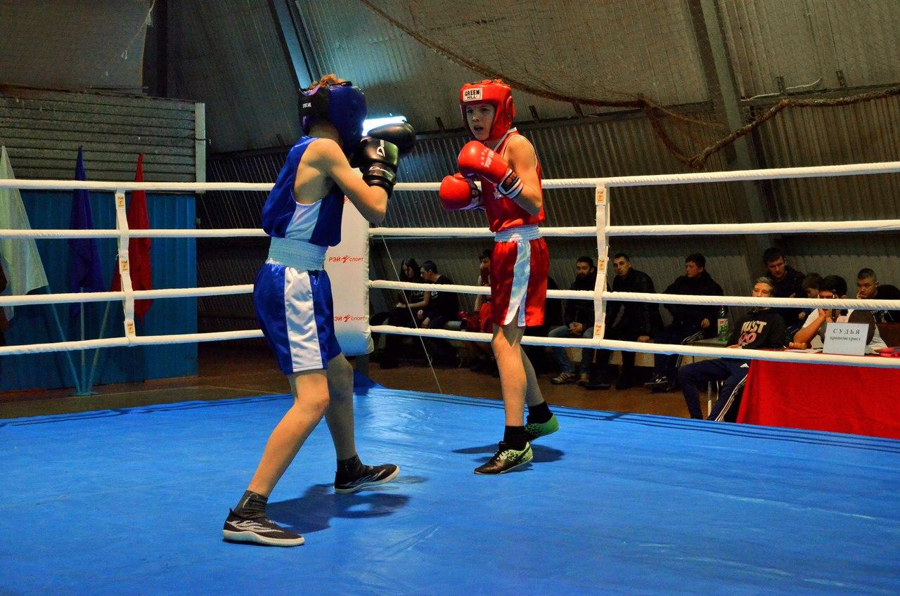 Традиционный турнир по боксу, посвященный памяти Андрея Колыгина _8